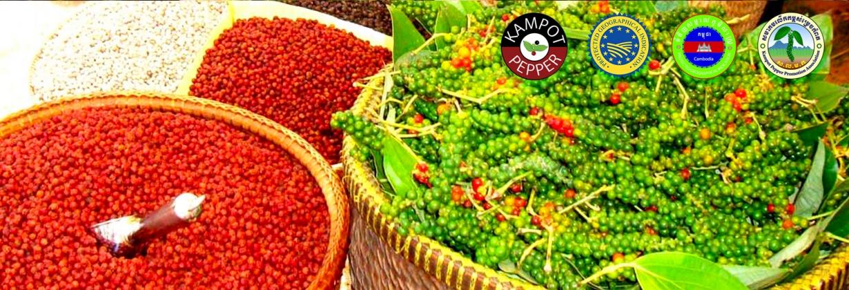GI Kampot Pepper